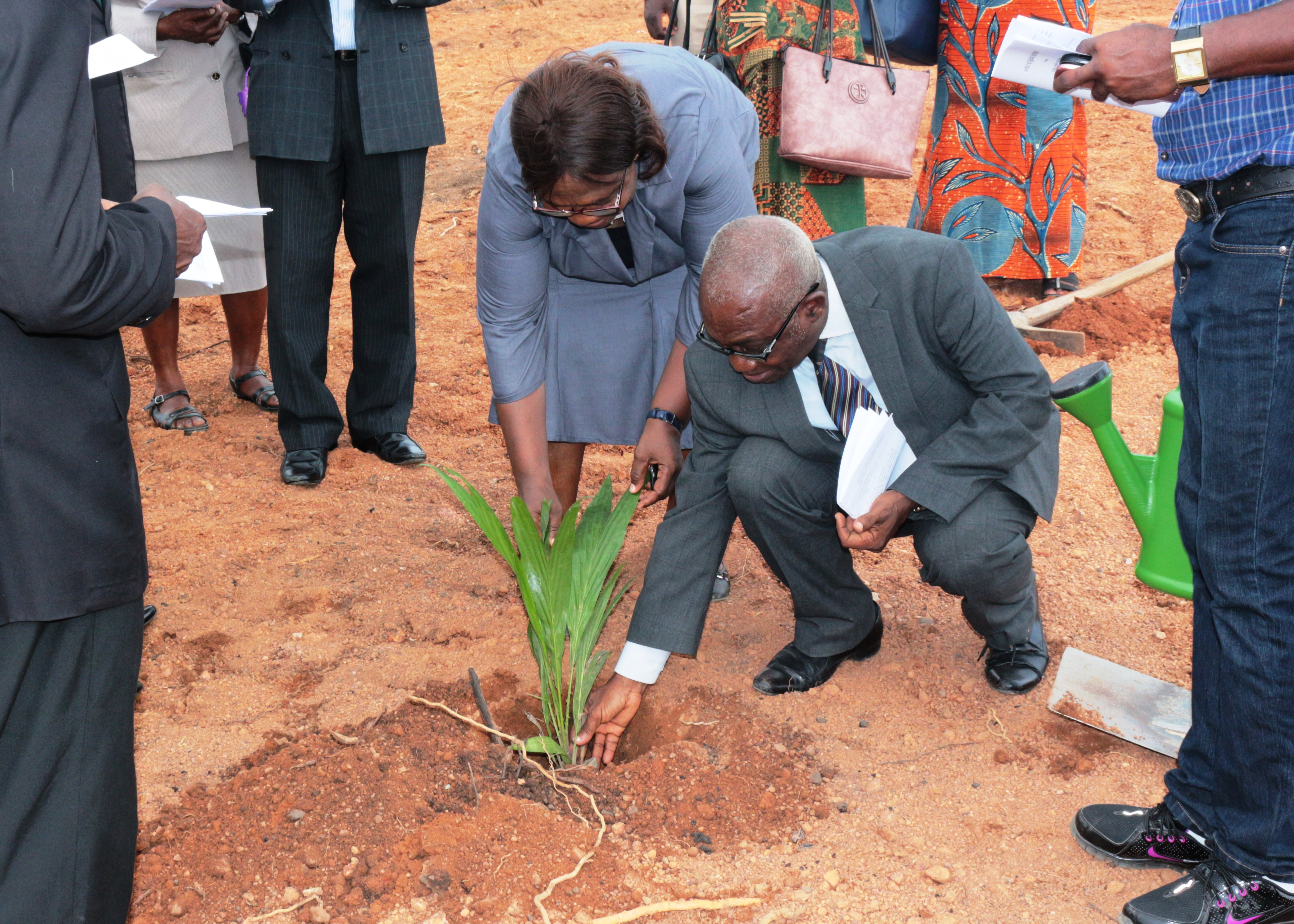 Deputy Registrar helping Rector to plant the palm tree